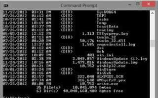 Как я могу получить файл для внешней команды MS-DOS?