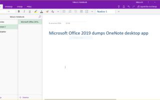 Microsoft Office 2019 создает дамп приложения OneNote для настольных компьютеров